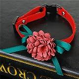 DeliV Halsband mit Blumenmotiv, für Hunde und Katzen, weich, Samt, rot, S