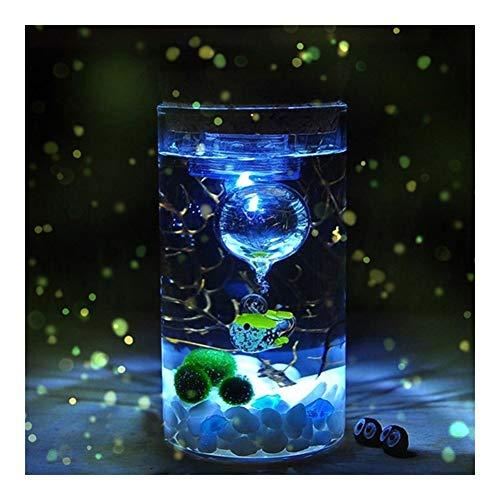 Qiong YaoTIAN Nachtlicht 12 CM Glasflasche Jar Hydroponic Terrarium Container Licht LED Cork Stopper Ökologische Flasche Nachtlichter
