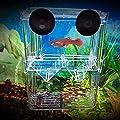 AeeKing Plastik Fischzucht Isolation Schutzbox Aquarium Braten Fisch Brutplatz S Feine Handwerkskunst