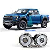 Car Rover LED Seitenspiegel Logo Shadow Projector Licht für Ford -- 1 Paar