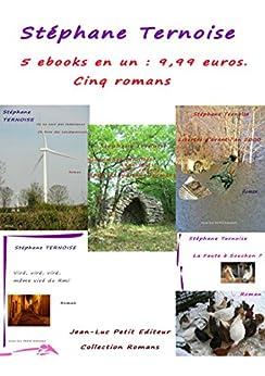 5 ebooks en un : 9,99 euros. Cinq romans: offre promotionnelle livre numérique français avec engagement qualité par [Ternoise, Stéphane]
