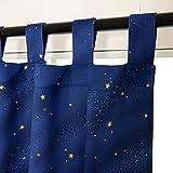 WOLTU VH5838bl-2, 2er Set Vorhänge Gardinen Blickdicht Schlaufen mit Sternenhimmel Muster, Verdunklungsvorhang für Wohnzimmer Kinderzimmer Schlafzimmer, 135x245 cm Blau