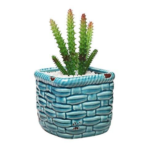 contenitore-piante-grasse-stile-vasaio-cestino-turchese-rustico-in-ceramica