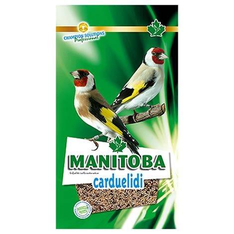 Manitoba - Mixtura Jilgueros Carduelidi, 2.5KG