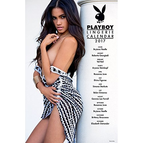 playboy-lingerie-2017-calendar