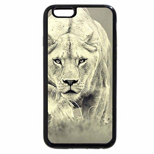 iPhone 6S Plus Coque, iPhone 6Plus Coque, Lionne chasse
