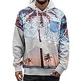 JUST RHYSE Fire Island Hoodie Herren Pullover Kapuze Logo Aufdruck Muster Palme Männer Sweatshirt Grau Farbig DefShop S M L XL XXL