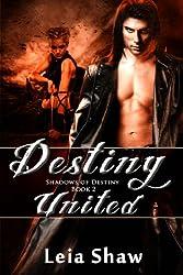 Destiny United (Shadows of Destiny Book 2) (English Edition)
