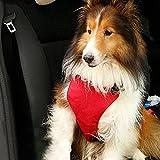 GEZICHTA Pet Sicherheitsgurt, Vest Safety Dog Harness, Pet Hund Verstellbare Auto Safety Mesh Geschirr Travel Weste mit KFZ Auto Sicherheitsgurt Leine Clip