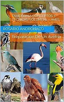 Taxidermia:Conceptos y Técnicas Volumen1 – Aves: Preparación De Un Avefría (Spanish Edition) by [Andronaco, Rosario]