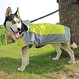 VICTORIE Impermeabile per Cani Poncho Antipioggia Neve Vestiti Mantellina Cappuccio Riflettente Regolabile per Medie e Grandi Cani Animali Verde L
