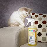 Geruchsneutralisierer Spray gegen Gerüche von Katzen-Urin, Hund & Nager Gerüche | 40ml Konzentrat ergibt 1-2 Liter gebrauchsfertigen Geruchskiller / Geruchsentferner / Bio Reiniger - 3