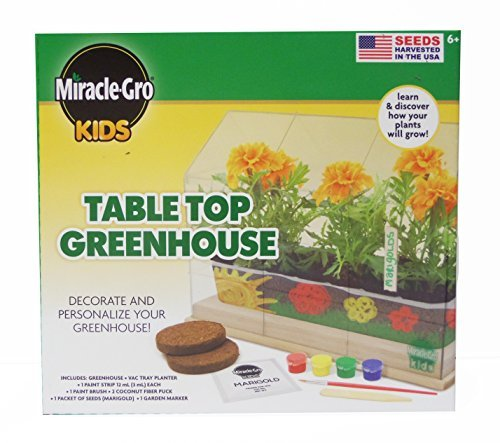 miracle-gro-kids-tabletop-greenhouse-kit-by-miracle-gro-kids
