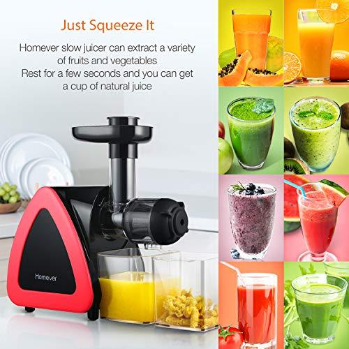 Homever Entsafter, Entsafter Gemüse und Obst mit Rücklauffunktion, Anti-Oxidation Extractor mit geräuschlosem Motor, Professionell langsamem Entsafter und Saftauffangbehälter und Reinigungsbürste