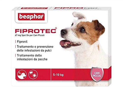 Beaphar fiprotec cane (3 pipette) - antiparassitario soluzione spot on con principio attivo fipronil, contro pulci e zecche (cani piccoli (5-10 kg))