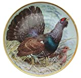 C1979 Haviland Limoges Franklin Porzellan Gamebirds der Welt Basilikum Ede Capercaillie CP1886 Teller