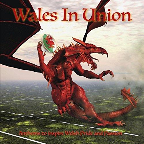 Wales In Union 2015