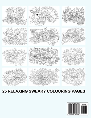 Swear Word Colouring Book: Colouring Books For Adults Featuring Stress Relieving Hilarious and Fancy Sweary Words: Volume 1 (Stress Relief Words to Colour)