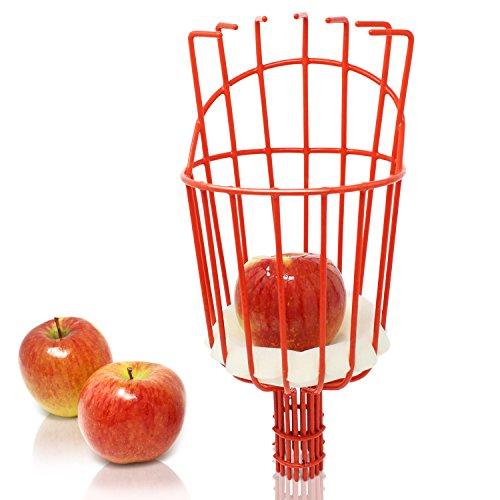 Amazy Iceberk Obstpflücker - Praktischer Pflückkorb zur Ernte von Obst, kompatibel mit der Iceberk Schneidgiraffe (nur Gerätekopf)
