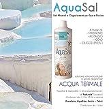 aquasal–Mélange à haute concentration de sels de magnésium, potassium et iode à haute activité biologique pour spa Jacuzzi et piscine–Aqua Sal 1LT. Natural–Expédition immédiate