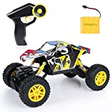 SGILE RC Car Remote Control Car - 1/18 Scale 4WD 4x4 Rock Crawlers