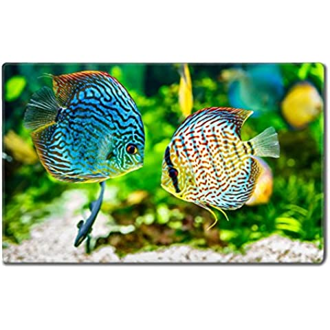 Luxlady Large Gaming Mousepad Symphysodon discus in