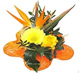 VERSANDKOSTENFREI Blumenstrauß Exotic + kostenlose Glückwunschkarte Blumenversand