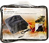 Picture Of 12V HEATED/ELECTRIC 12V CAR/TRAVEL BLANKET/RUG NEW