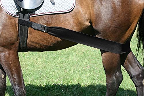 EQuest Körper Bandage Hinterhand Pferd (M) -