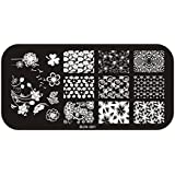 Perfect Summer 1pcs Plaque de Tampons Vernis Stamping Nail Art Image Timbre 6X12 cm