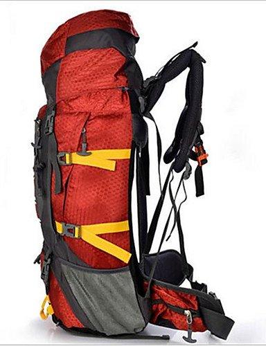 ZQ 55 L Rucksack Camping & Wandern / Klettern / Reisen Draußen / Legere SportWasserdicht / Wärmeisolierung / Multifunktions / Skifest / Black