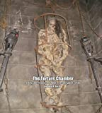 The Torture Chamber (English Edition)