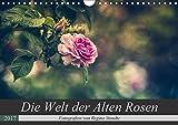 Die Welt der Alten Rosen (Wandkalender 2017 DIN A4 quer): Malerische Fotografien von alten Rosensorten. (Monatskalender, 14 Seiten ) (CALVENDO Natur)