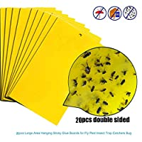 ZUILEE 20Pcs Strong Flies Traps Bugs Sticky Board Catching Aphid Insects Pest Killer, 20 pieces of sticky fly stickers 12.5 * 20cm