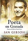 Best La vida de las ciudades - Poeta en Granada: Un paseo por la ciudad Review