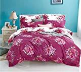 Gifty Engage Polyester Blend Double AC Comforter with Queen Size Bedsheets with 2