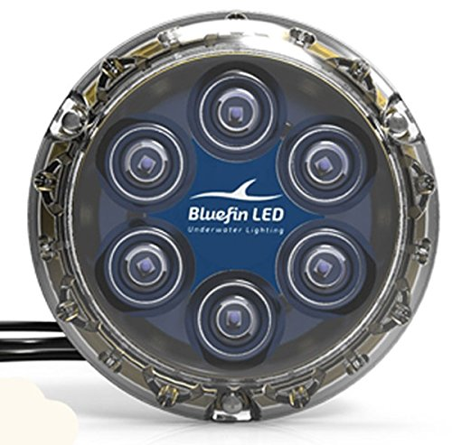 Bluefin Piranha P6 LED weiß