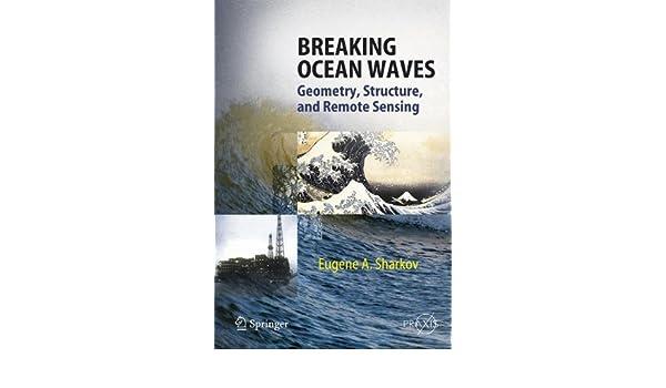 Breaking Ocean Waves: Geometry, Structure, and Remote Sensing