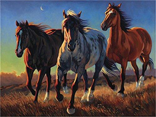 DIY Öl Malen nach Zahlen Kit für Erwachsene Anfänger 40,6x 50,8cm-Starke Pferd, Zeichnen mit Pinsel Weihnachten Decor Dekorationen Geschenke Frame (Anfänger öl-malen)