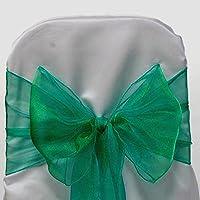 EDS 100 Organza Chair Bow Sash Wedding Banquet Decor sashes Green by EDS - Organza Sash