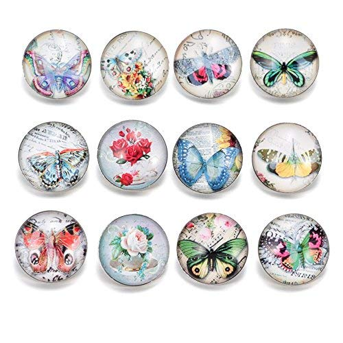 Schmetterling Thema 20 mm Snap Button Charms für Ginger Armbänder Jewelry Supplies ()