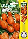 Portal Cool Las zanahorias París Mercado 5 / Inga, semillas, Daucus zanahoria, verduras, Chrestensen, Sps