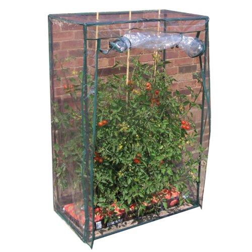 tomaten-gewchshaus-treibhaus-bxtxh-100x50x150-cm