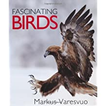 Fascinating Birds by Markus Varesvuo (2012-08-05)