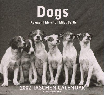 Dogs (calendario 2002) (Tear Off Calendar)