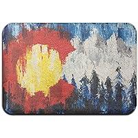 diyabcd Colorado bandera Doormats antideslizante para casa jardín puerta alfombra Felpudo piso almohadillas