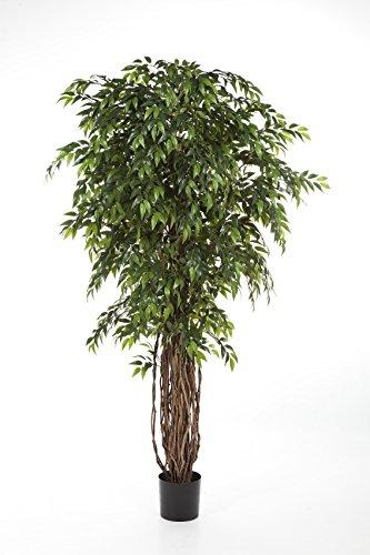 artplants Künstlicher Ficus ALIRIO, Lianenstamm, 4455 Blätter, grün, 210 cm – Ficus im Topf/Kunst Ficus