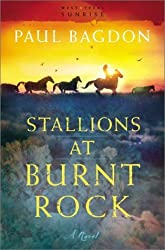 Stallions at Burnt Rock by Paul Bagdon (2003-01-02)