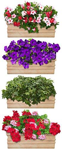 Plage 803702 adesivo per pareti formato grande-fiori da balcone, 120 x 50 cm
