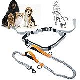 Joggingleine, Joggen Hundeleine mit Bauchgurt für mittlere und große Hunde 145- 175 CM, für Joggen Laufen Radfahren Wandern